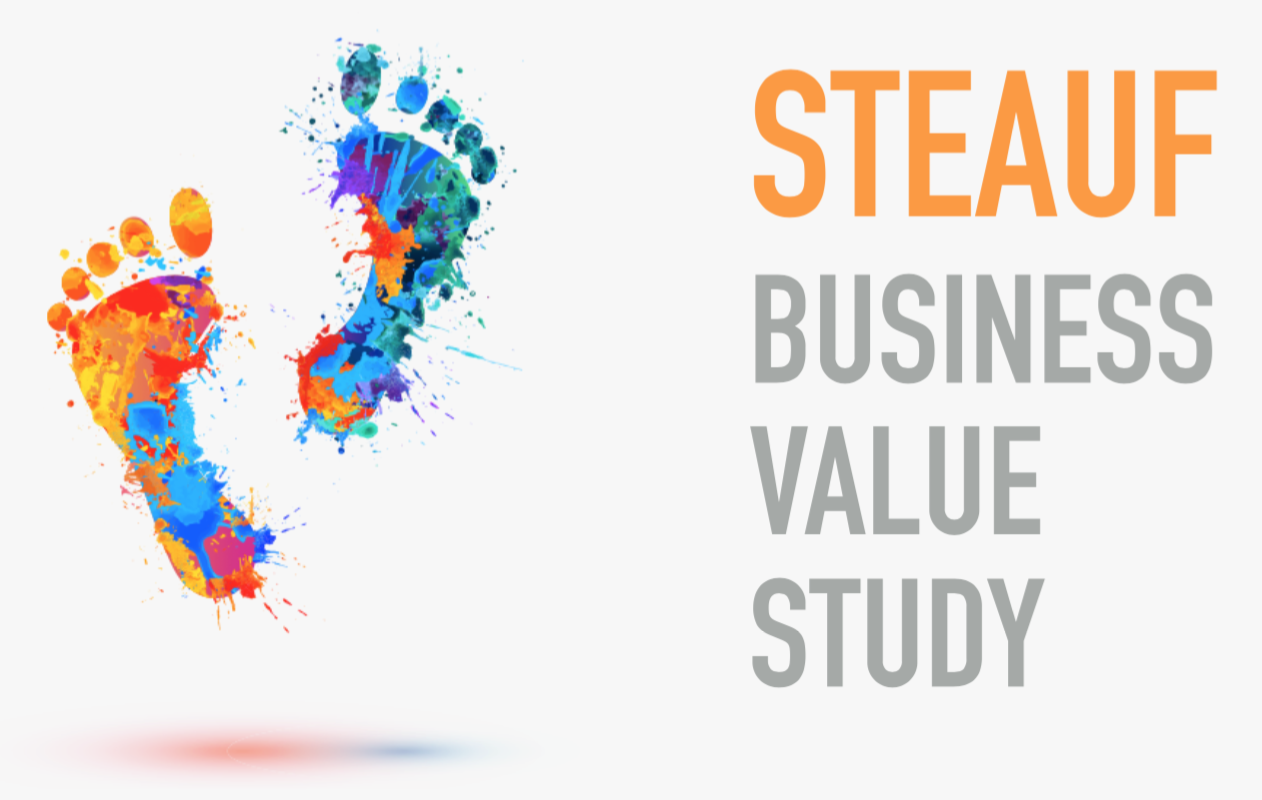Titelbild_STEAUF_Business_Value_Study-Werte-Studie